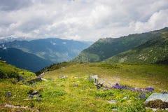 Montagne dell'Altai immagine stock