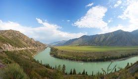 Montagne dell'Altay. fiume Katun Immagini Stock
