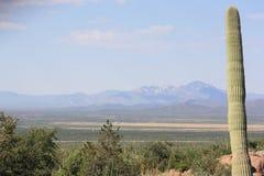 Montagne dell'Arizona Fotografia Stock