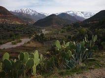 Montagne dell'atlante, Marocco Fotografie Stock Libere da Diritti
