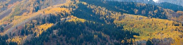 Montagne dell'Utah alla caduta Fotografie Stock Libere da Diritti