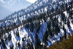 Montagne della Big Bear Fotografia Stock Libera da Diritti