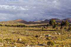 Montagne della Bolivia, altiplano Immagini Stock Libere da Diritti