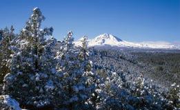 Montagne della cascata in inverno Fotografia Stock