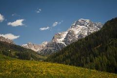 Montagne della dolomia, regione tirolese di Italia Fotografia Stock Libera da Diritti