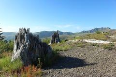Montagne della gamma della cascata fotografie stock