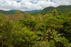 Montagne della giungla e cielo nuvoloso Immagini Stock