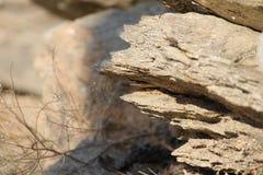Montagne della roccia Fotografie Stock Libere da Diritti