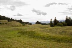 Montagne della Romania Fotografia Stock