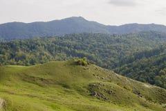 Montagne della Romania Immagine Stock