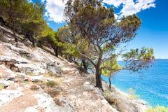 Montagne della scogliera della pietra e del mare adriatico con i pini in Dalmazia fotografia stock
