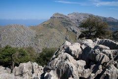Montagne della Sierra de Tramontana in Mallorca Fotografia Stock