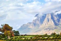 Montagne della vigna in valle Sudafrica di Stellenbosch Immagini Stock Libere da Diritti