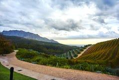 Montagne della vigna in valle Sudafrica di Stellenbosch Fotografia Stock