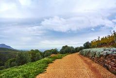 Montagne della vigna in valle Sudafrica di Stellenbosch Immagine Stock Libera da Diritti