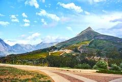 Montagne della vigna in valle Sudafrica di Stellenbosch Immagini Stock