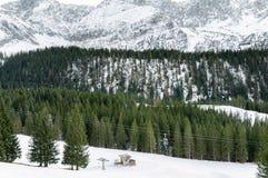 Montagne delle alpi coperte in neve ed in foresta Fotografia Stock