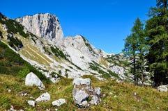 Montagne delle alpi di paesaggio Fotografie Stock