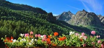 Montagne delle alpi in remi Notre Dame, Valle di Aosta, Italia della valle Immagini Stock Libere da Diritti