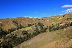 Montagne delle Ande che visualizzano i campi di agricoltura, Sudamerica Fotografia Stock
