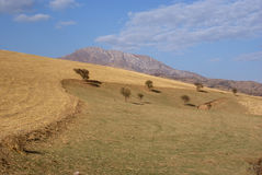 montagne delle colline Fotografia Stock