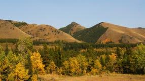 montagne delle foreste di autunno fotografia stock
