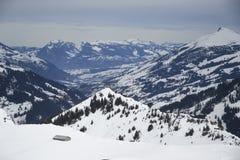 Montagne di Adelboden Immagine Stock