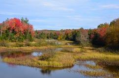 Montagne di Adirondack e regione paludosa in autunno Fotografia Stock Libera da Diritti
