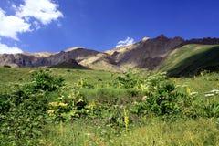 Montagne di Alborz Fotografie Stock Libere da Diritti