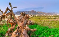 Montagne di Almeria Fotografie Stock
