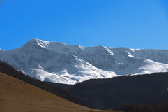 Montagne di Altai Bello paesaggio dell'altopiano La Russia Fotografia Stock