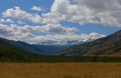 Montagne di Altai Bello paesaggio dell'altopiano La Russia Fotografie Stock