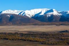 Montagne di Altai, cresta di Chuya, Siberia ad ovest Fotografia Stock