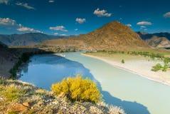 Montagne di Altai e bello fiume Immagini Stock