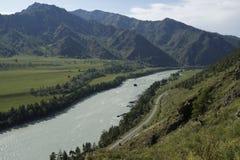 Montagne di Altai, fiume di Katun Fotografia Stock
