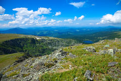 Montagne di Altai. La Russia Fotografia Stock