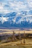 Montagne di Altai nell'area di Kurai con Chuisky del nord Ridge su backgr Immagini Stock