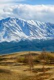 Montagne di Altai nell'area di Kurai con Chuisky del nord Ridge su backgr Fotografia Stock Libera da Diritti