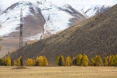 Montagne di Altai Repubblica di Altai, Russia nave Fotografia Stock