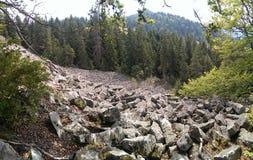Montagne di Apuseni Fotografia Stock