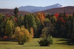 montagne di autunno del adirondack Fotografia Stock