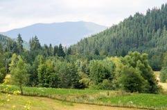 Montagne di Balcani, Bulgaria Fotografia Stock Libera da Diritti