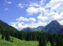 Montagne di Bautiful Fotografia Stock