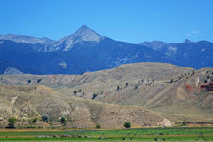 Montagne di Beaverhead - Idaho Fotografie Stock Libere da Diritti