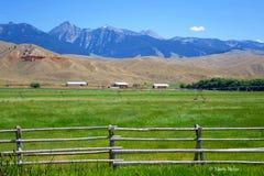 Montagne di Beaverhead - Idaho Immagini Stock