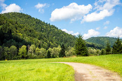 Montagne di Bieszczady Immagini Stock Libere da Diritti