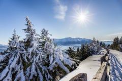 Montagne di Bucegi osservate dal picco di Postavarul, Brasov, la Transilvania, Romania fotografie stock libere da diritti