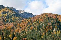 Montagne di Bucegi, Romania in autunno Fotografia Stock
