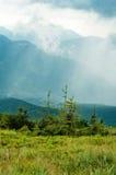 Montagne di Carpathians Fotografie Stock Libere da Diritti
