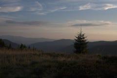 Montagne di Carpathians - tramonto Fotografia Stock Libera da Diritti
